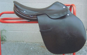 Saddle after Leather Therapy